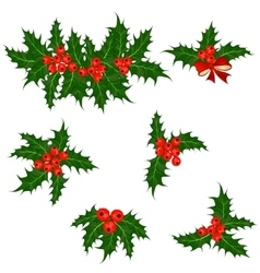 Holly berries set christmas symbol vector