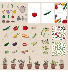 Set with vegetables garden tools and equipment vector