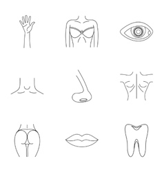 Outer part of body icons set outline style vector