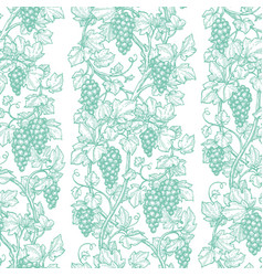 seamless pattern with grape vine vector image vector image
