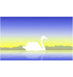 White swan on lake scenery silhouettes vector