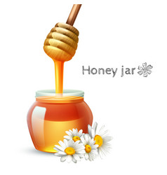 Honey stick and jar vector