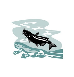 Catfish Jumping vector image