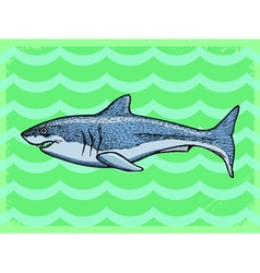 Vintage grunge background with shark vector