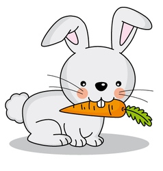 Rabbit eating a carrot vector