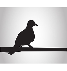 Pigeon sits on a pole silhouettes on the white bac vector