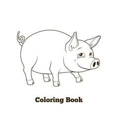 Coloring book pig cartoon educational vector