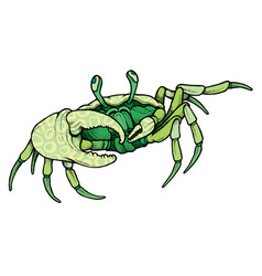 Hand drawn line art colorful crab vector