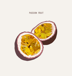 Passion fruit passion slice hand drawn vector