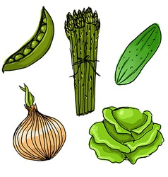 Set of five cute hand drawn vegetables vector image