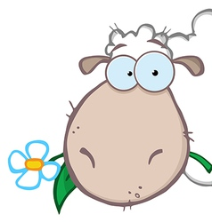 Sheep Eating A Flower vector image