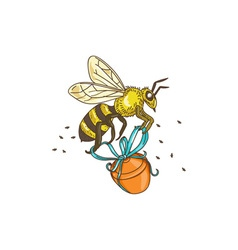 Bee Carrying Honey Pot Drawing vector image