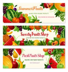 fresh fruit cartoon banner for food drink design vector image