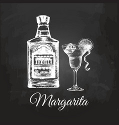 hand sketched tequila bottle and margarita glass vector image vector image