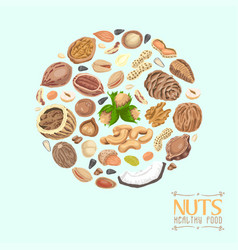 Isolated circle of nuts and seeds vector