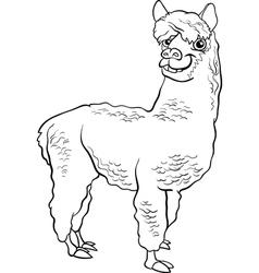 Alpaca animal cartoon coloring book vector