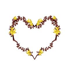 Bastard teak flowers in a heart shape vector