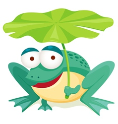 Frog vector image vector image