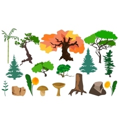Set plants trees fungi and stones vector