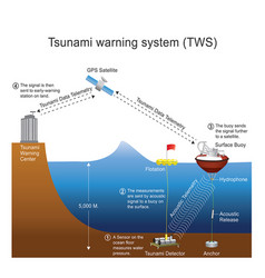 tsunami warning system process vector image