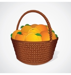 Fresh Oranges with Leaves in Wicker Basket vector image