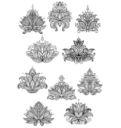 Outline persian paisley flowers and blossoms vector
