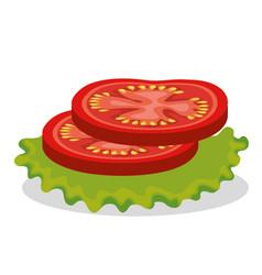 Fresh slice tomatoes icon vector