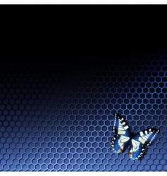 Tech background with butterfly vector