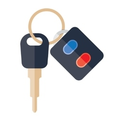 car keys on a white background vector image