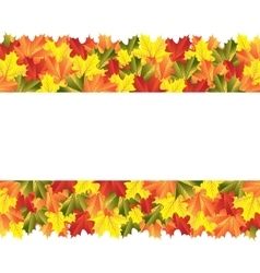 Banner with autumn maple leaves vector