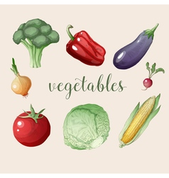 Vegetables set in vintage style healthy food vector
