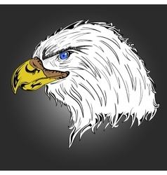 Colored Eagle vector image vector image