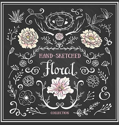 Hand Drawn vintage floral elements Set of flowers vector image vector image