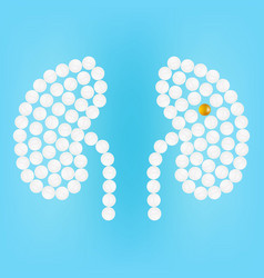 Human kidney with pills isolated on a background vector