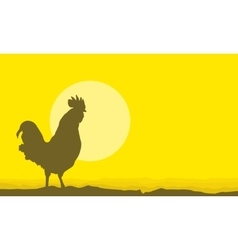 Silhouette of rooster scenery on yellow vector