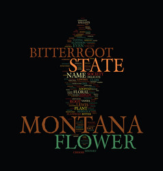 Montana state flower text background word cloud vector
