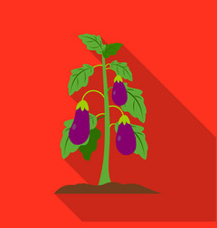 Eggplant icon flat single plant icon from the big vector