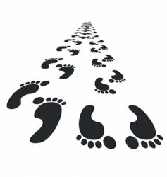foot steps vector image