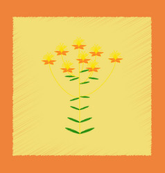 Flat shading style icon wild plant hypericum vector