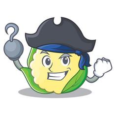 Pirate cauliflower character cartoon style vector
