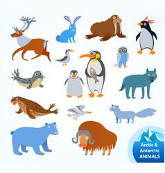 Set funny arctic and antarctic animals vector