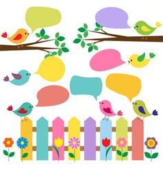 Colorful birds with bubbles for speech vector