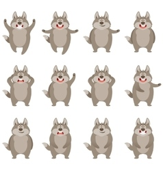 Set of flat wolf icons vector image