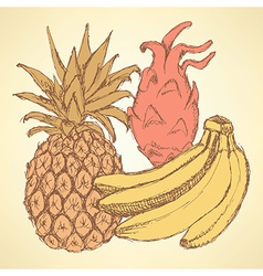 Sketch exotic fruits in vintage style vector