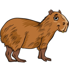 Capybara animal cartoon vector
