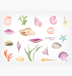 Collection of gorgeous hand drawn seashells vector