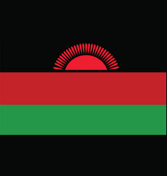 Malawi flag for independence day and infographic vector