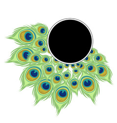 wreath peacock feathers with black frame for text vector image