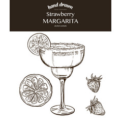 Strawberry margarita sketch vector