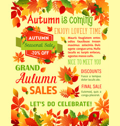 Autumn fall maple leaf sale poster template vector